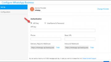 Authenticate via API or UserName & Password